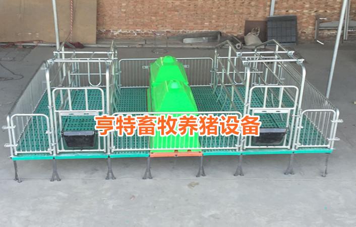 厂家定做新型母猪产床分娩栏漏粪板价格合理