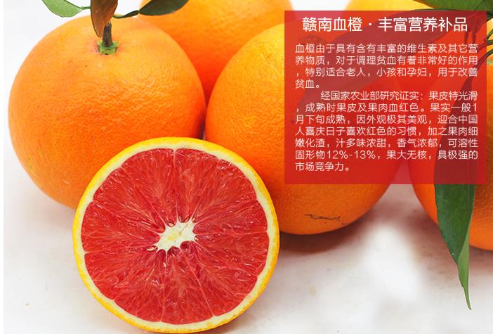 大量批发优质赣南脐橙.红肉脐橙-支持一件代发.
