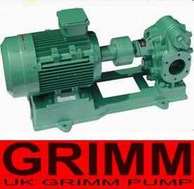 进口齿轮油泵(欧美进口品牌)
